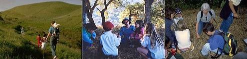 Ravenswood Open Space Preserve - Free Explorer Hike